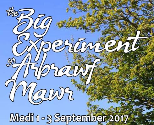 BEAM 2017: the Big Experiment / yr Arbrawf Mawr