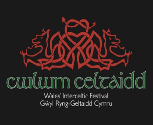 Cwlwm Celtaidd Young Musician of the Festival 2019