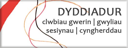 dyddiadur trac