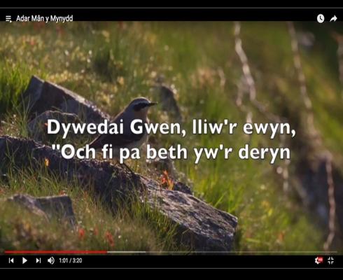Dysgwch Ganeuon Gwerin Draddodiadol gydag Arfon Gwilym Gan Ddefnyddio Fideos â Geiriau Newydd