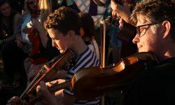 fiddlers-sunlight